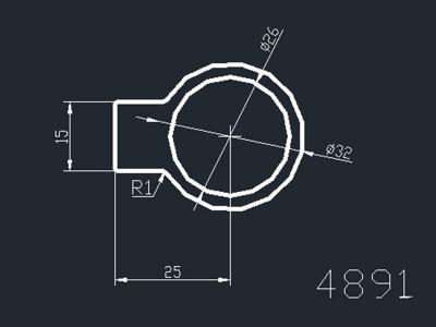 产品4891